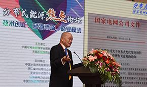 国家发改委能源研究所研究员 王斯成