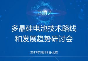 多晶硅电池技术路线和发展趋势研讨会