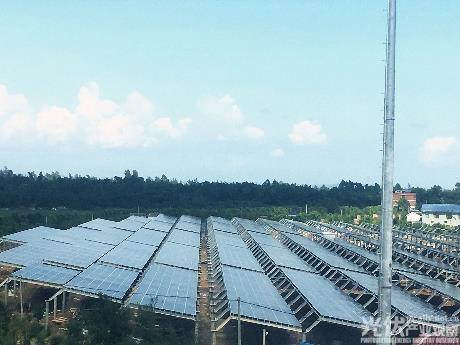 全球首个海水渔光互补——广西防城港80兆瓦项目并网发电